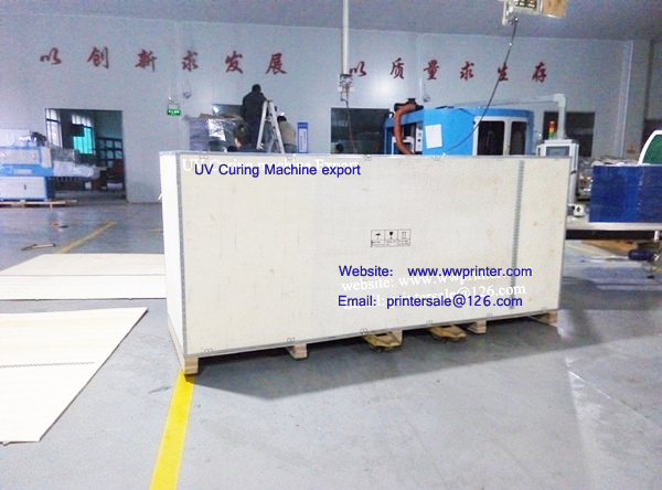 Bottle UV Curing Machine exported